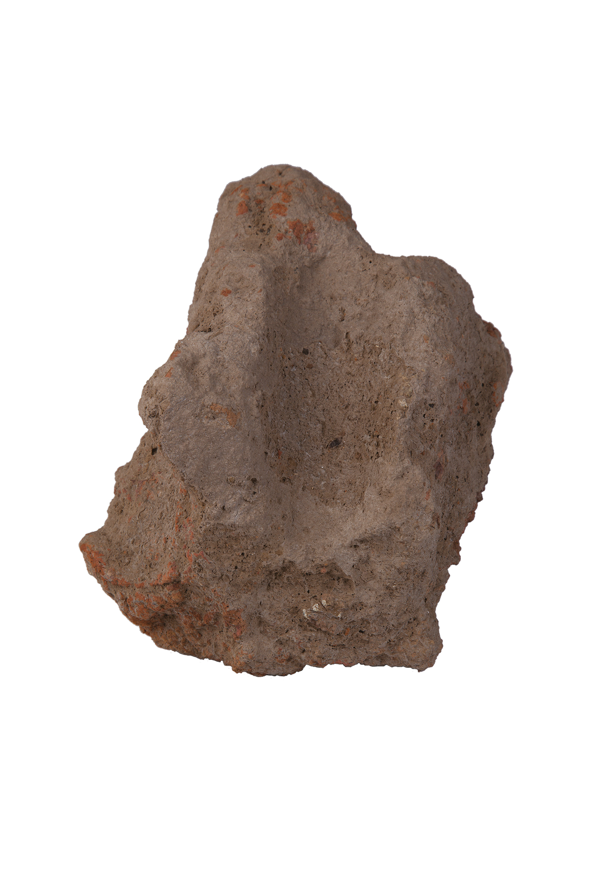 Plaster of a shed, Azzollini Fund, Early Neolithic Age