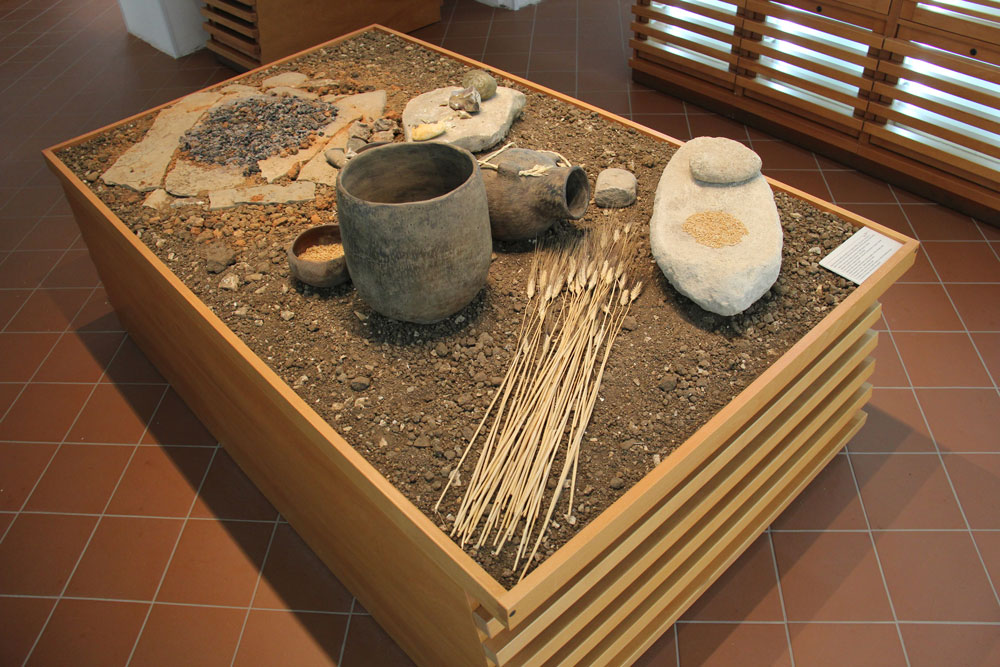 Neolithic Age: Settlements